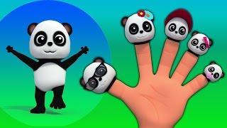 gia đình ngón tay gấu trúc | trẻ em & bài hát bé | Baby Bao Panda Finger Family | Finger Family Song