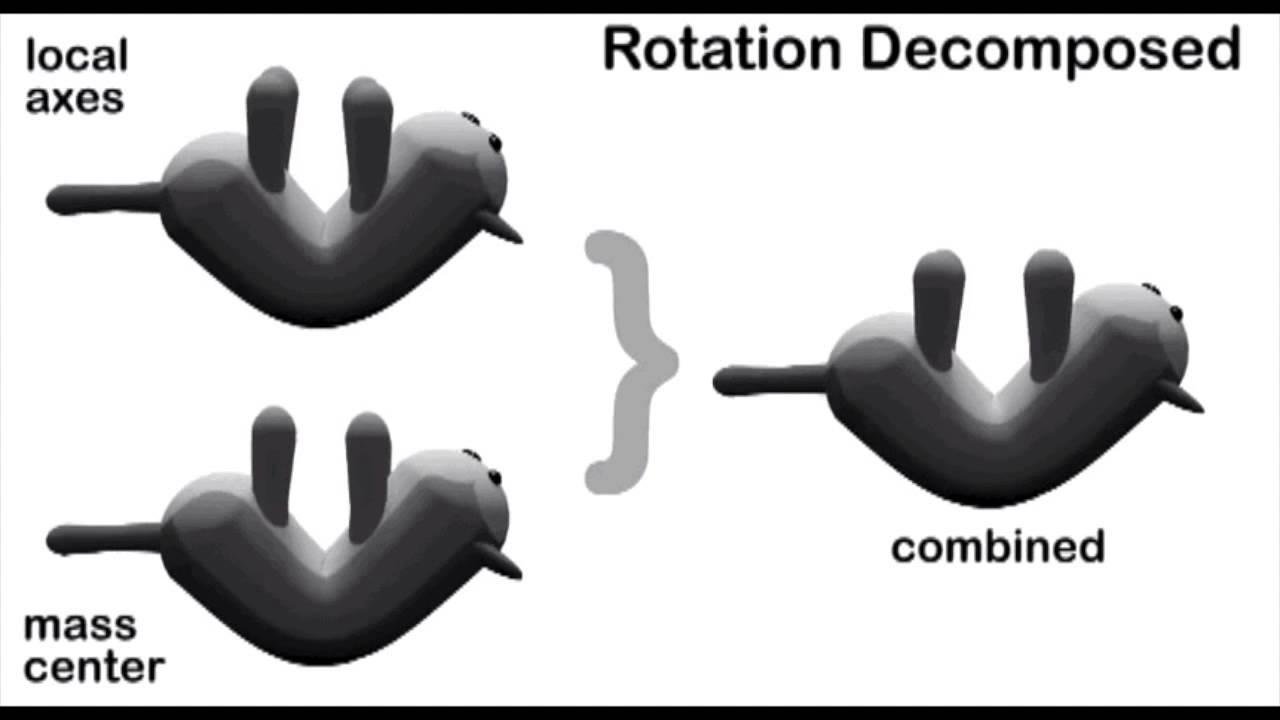 Righting Reflex Mice Cat Righting Reflex Rwa