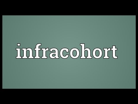 Header of Infracohort
