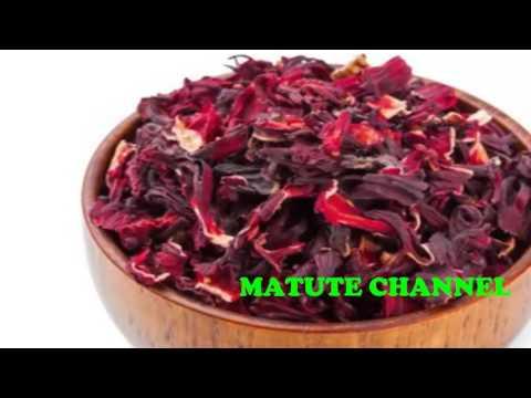 Beneficios de la flor de jamaica thumbnail