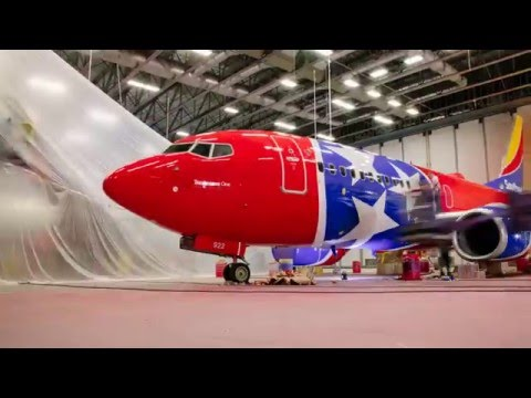 Southwest Airlines: Introducing Tennessee One