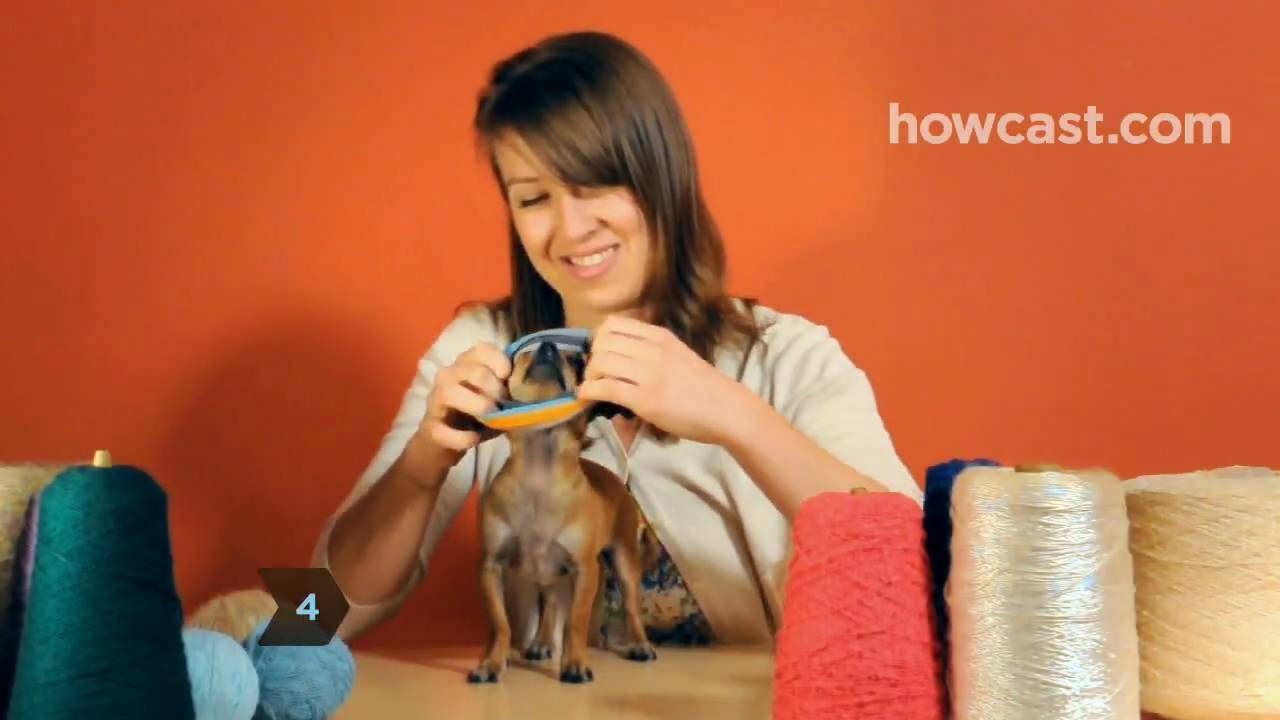 How To Turn A Large Sock Into A Tiny Dog Sweater Youtube