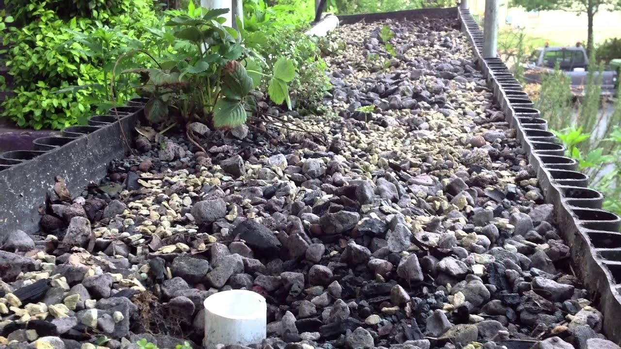 Soilless growing outdoors with vertical biogarden youtube for Soil less farming