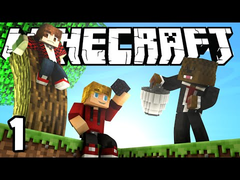 Skyblock videolike for Blancana y mirote minecraft
