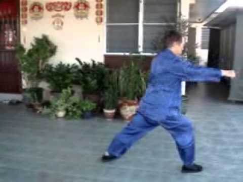 鷹爪五十路連拳 50 Sequences of Eagle Claw Kung Fu