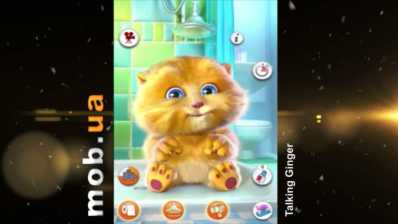 Кот которые повторяет слова играть