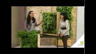sustratos para jardín vertical