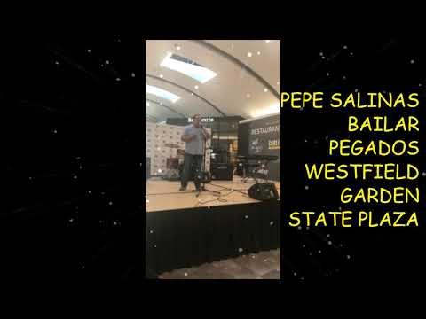 BAILAR PEGADOS   Canta Pepe Salinas  Westfield Garden State Plaza