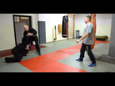 Our common Systema's technique. Systema by Serge Savin Image 1