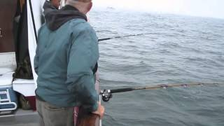 California Dawn Halibut Bonanza