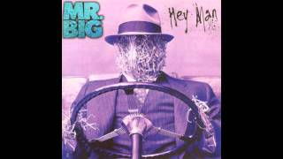 Watch Mr Big Where Do I Fit In video