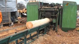 Log debarking machine | Exports of round wood pine logs from Ukraine