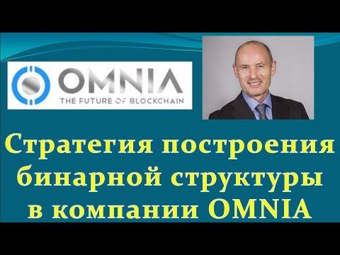 OMNIA - $300.000 в первый год! Стратегия построения бинарной сети в Омния.