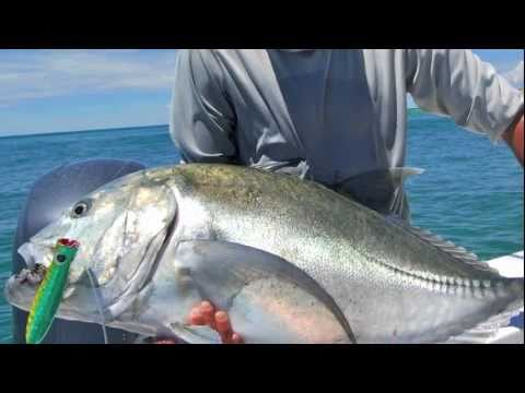 GT Popping Peak Sportfishing