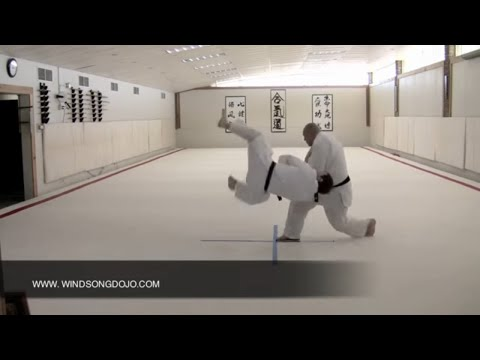 Judo Throwing - Push-Pull set up for Uki Otoshi.mov Image 1