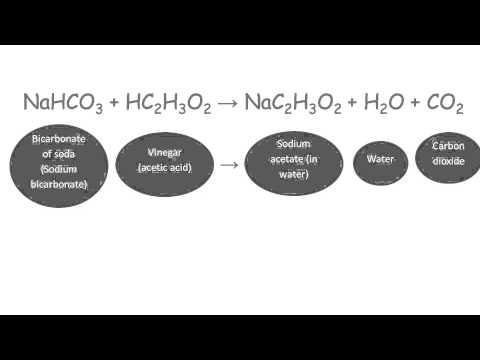 Science Week 2014 - Year 5
