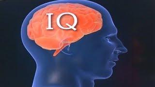 Trí thông minh của con người ngày càng giảm? - Tin Tức VTV24