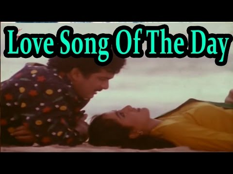Love Song Of The Day 06