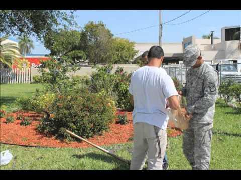 Hialeah Miami Lakes Senior High School-Environmental Action