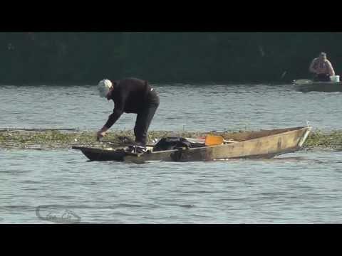 видео ловля на смык