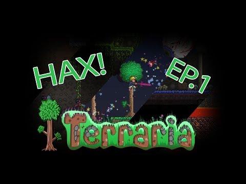 Terraria 1.2.4.1 Inventory Editor!
