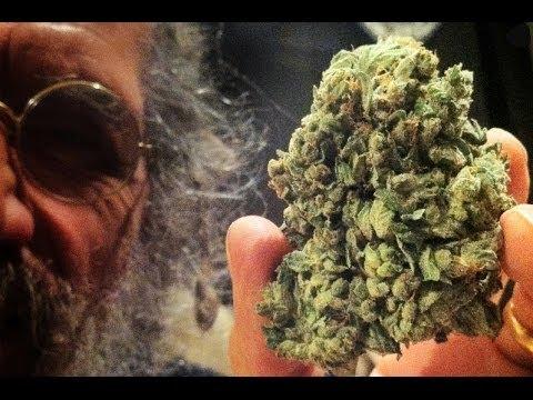 Soma Seeds talks SoG Kush at the Cannabis Cup 2013 SGTV HD