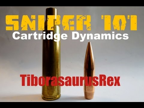 SNIPER 101 Part 2 - Cartridge Dynamics - Rex Reviews