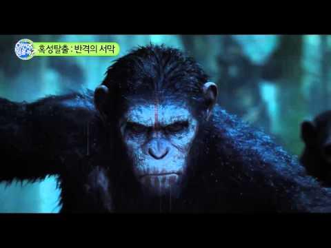 오늘 뭘 볼까? 영화 혹성탈출: 반격의 서막
