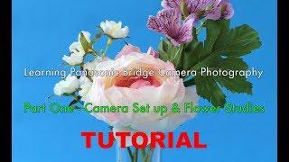 Panasonic Lumix Bridge Camera Photography Tutorial - Part One