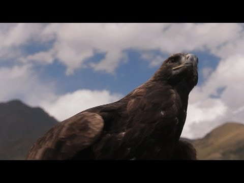 Kyrgyzstan's Golden Eagle Hunters