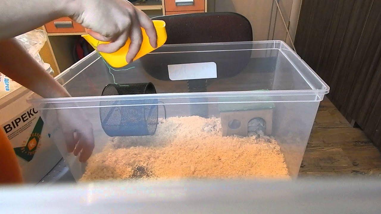 Как сделать кормилку для хомяка своими руками
