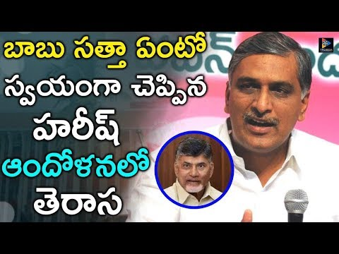 Minister Harish rao Fear About AP Cm Chandrababu naidu Political Strategy  | CM KCR | TFC NEWS