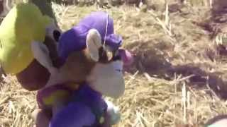 Wario and Waluigi's crazy adventures episode 1: the Pumpkin Patch!
