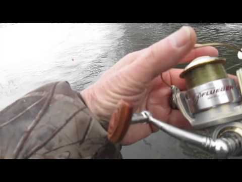 Erie steelhead fishing March 2015