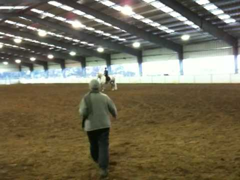 Kristen Does Dressage - Part 2 Video