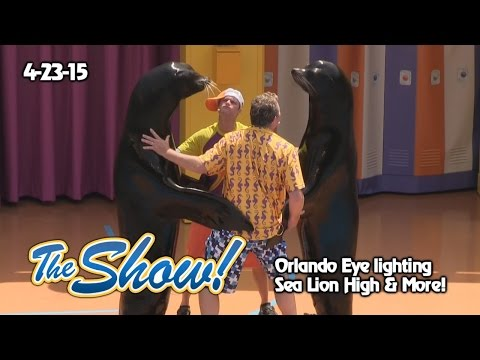 Attractions - The Show - Orlando Eye lighting; Sea Lion High; latest news - Apr. 23, 2015