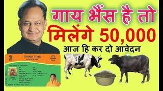 bhamasha  yojana गाय भैंस रखने वालो को मिलेंगे 50 हजार रु
