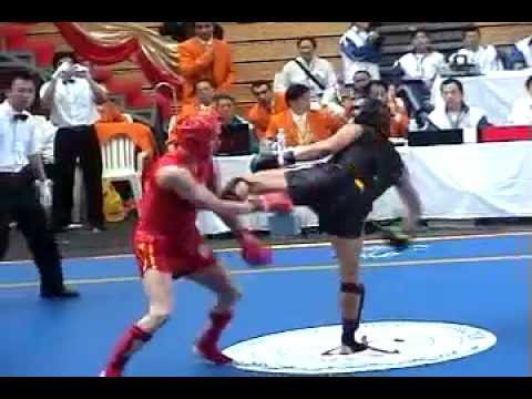 2003 San Shou World Championship Highlights Image 1