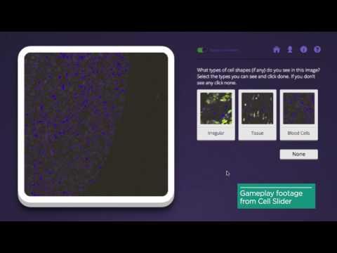 Cancer Research UK: Digital Social Innovation case study