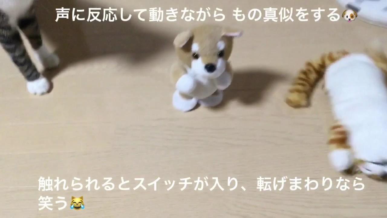 猫 笑う おもちゃ