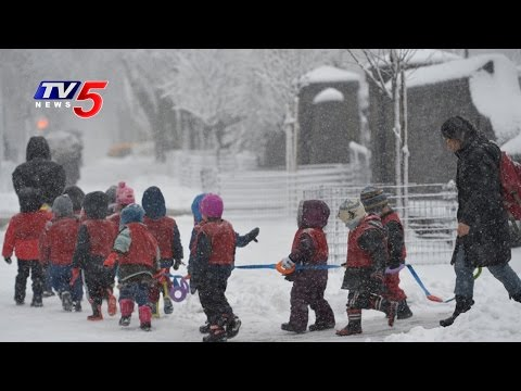 Heavy Snow Causes Havoc in Central America : TV5 News