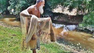 Bangladesh Fishing Videos  Village Fish Catching