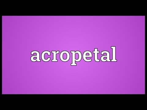 Header of acropetal