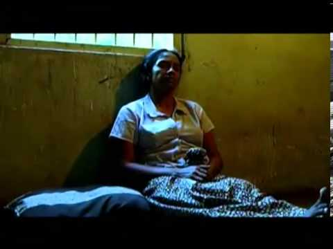 Srilankan Blood  Best Youth Film 2011 video