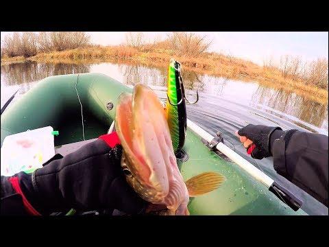 ловля окуня на реке с берега