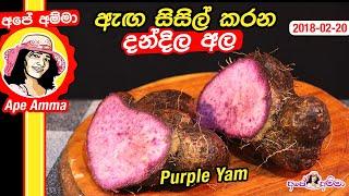 Healthy Purple Yam