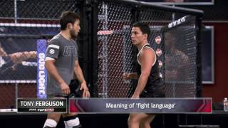 How fighters communicate when they speak different languages - TUF Talk