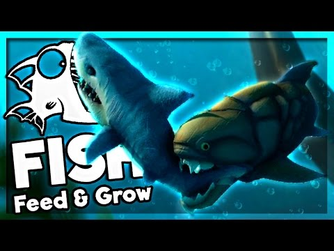 HOW TO BE INVINCIBLE... Almost | Feed and Grow: Fish