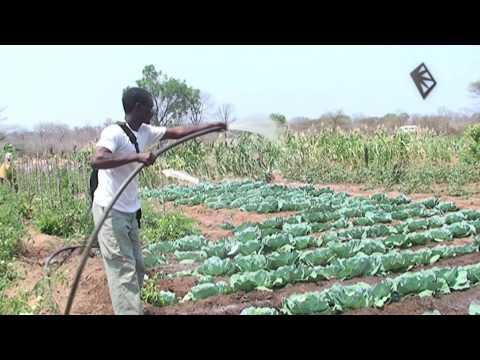 Spark Africa 3 - Treadle pump revolution in rural Zambia