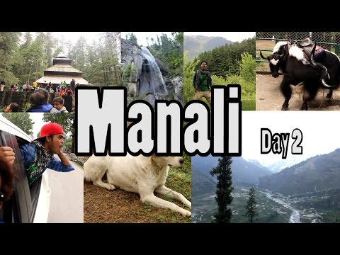 MANALI TRAVEL VIDEO DIARY & GUIDES (DAY 2): Hadimba temple, Sightseeing, Jungle, Hiking